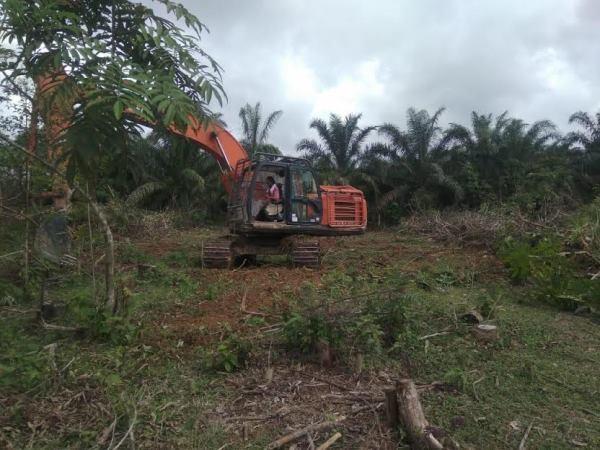 Dibantu RAPP, Warga Kampar Kiri Optimalkan Lahan untuk Agrowisata