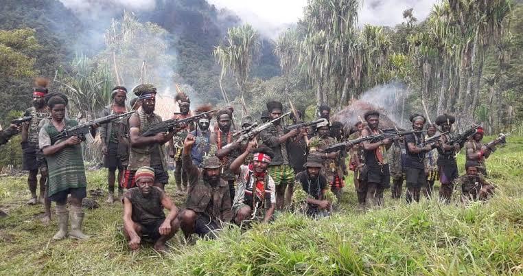 Konflik Papua, Komnas HAM Desak Jokowi Buka Dialog Damai Serta Adili TNI/Polri