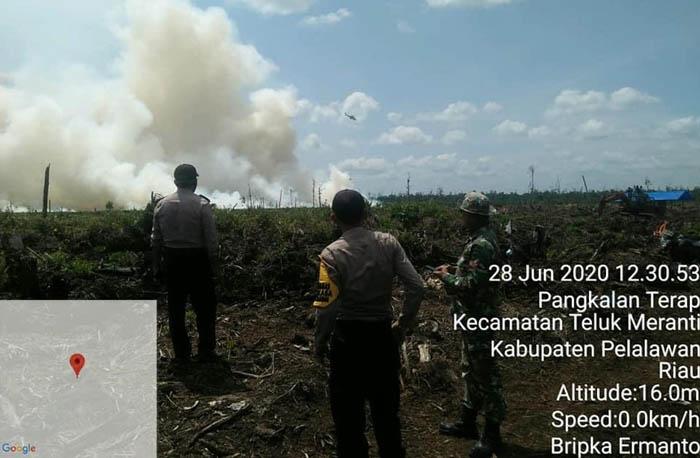 Lahan PT Arara Abadi di Desa Merbau Terbakar, Kapolsek Bunut: Tim Lagi Lakukan Pendinginan