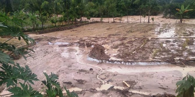 9 Rumah Warga di Solok Selatan Hanyut Dihantam Arus Sungai Batang Suliti