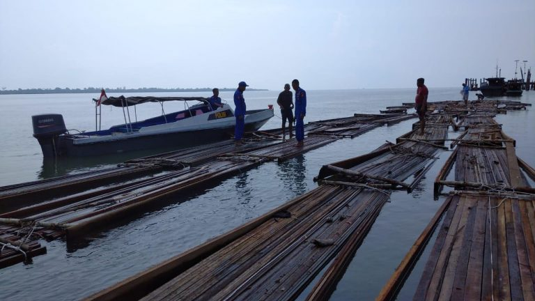Polda Riau Tangkap Dua Orang Pembawa 50 Ton Kayu Ilegal di Meranti