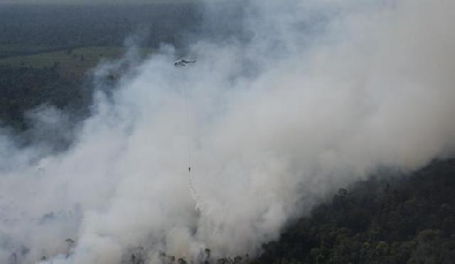 Titik Api Ditemukan di Bengkalis, Diduga Sengaja Dibakar untuk Buka Lahan