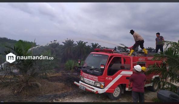 Satgas Pengendalian Karhutla Koto Gasib Berhasil Padamkan Lahan Warga Terbakar