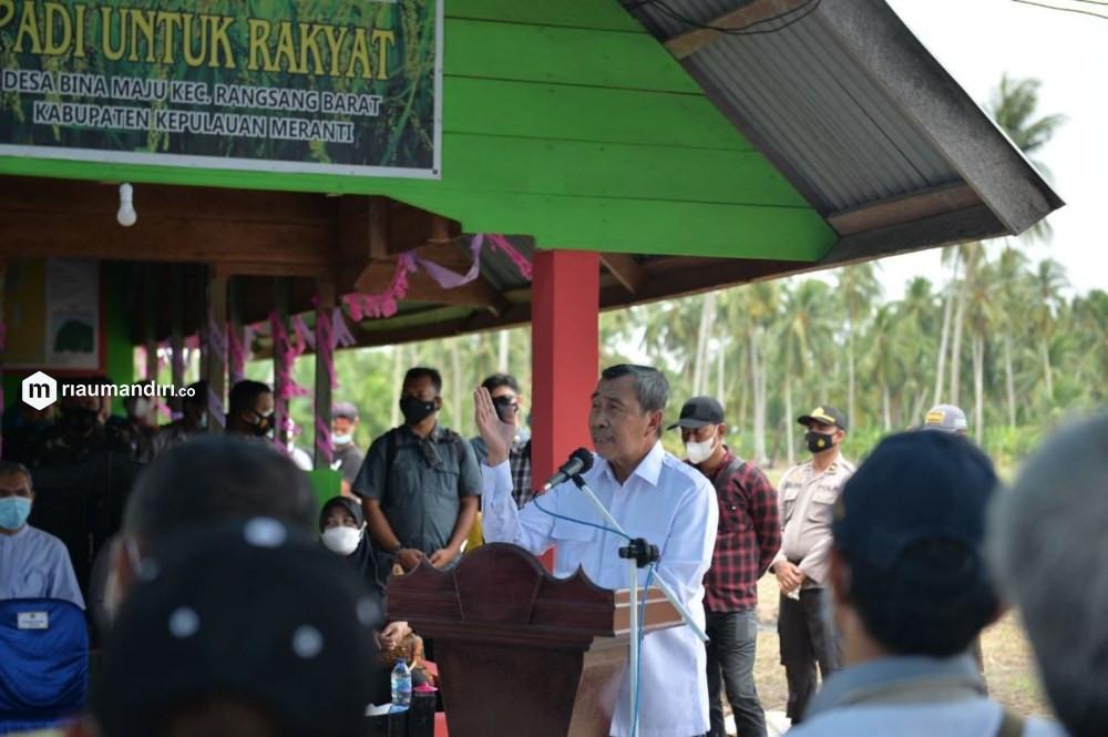 Gubri dan Istri Ikuti Penanaman Bibit Padi Unggul di Rangsang Barat