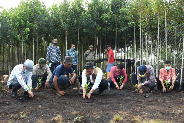 Pemulihan Ekonomi Dampak Pandemi di Riau Sejalan dengan Pemulihan Lingkungan