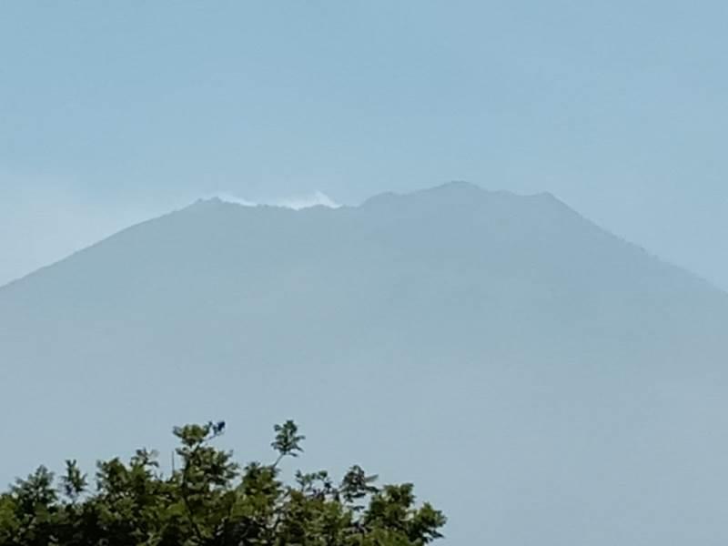 Hutan Gunung Arjuna Terbakar, 50 Pendaki Masih Berada di Atas