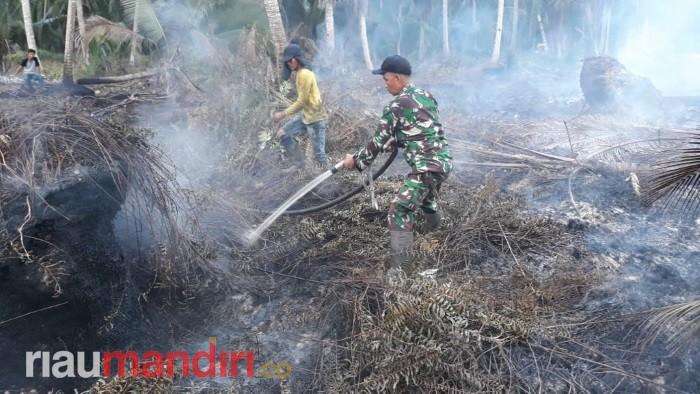 Beberapa Hari Terakhir Sejumlah Kecamatan di Inhil Terjadi Karhutla