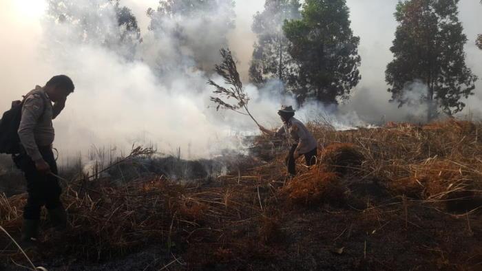 Karhutla Mulai Mengancam, 43 Hotspot Terpantau di Riau