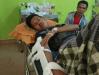 Kerbau Ternak di XIII Koto Kampar Serang Warga