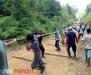 300 Masyarakat dan Perangkat Desa Koto Rajo Ikut <i>Ma Elo Kayu Jalur</i>