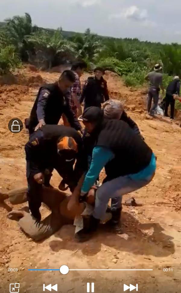 Ini Video PengeroyokanSecurity BBSI Terhadap Warga Desa Talang Indragiri Hulu